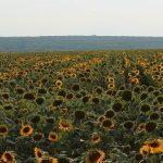 NAJnudniejszy kraj świata – Węgry