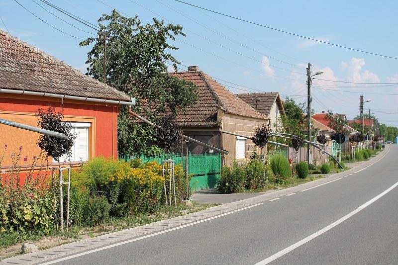 Wieś w Rumunii