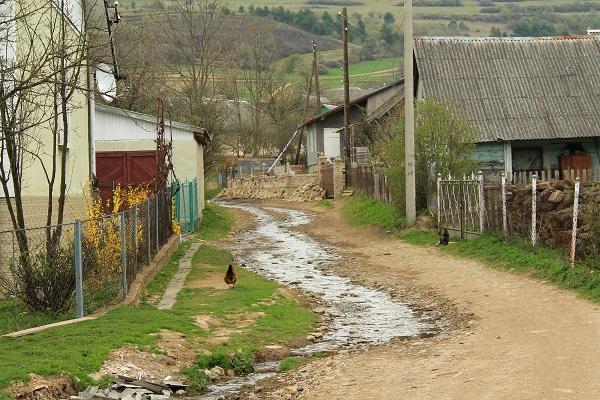Ukraińskie zakarpacie turka