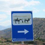 Pożegnanie z Gruzją – Jedwabny Szlak