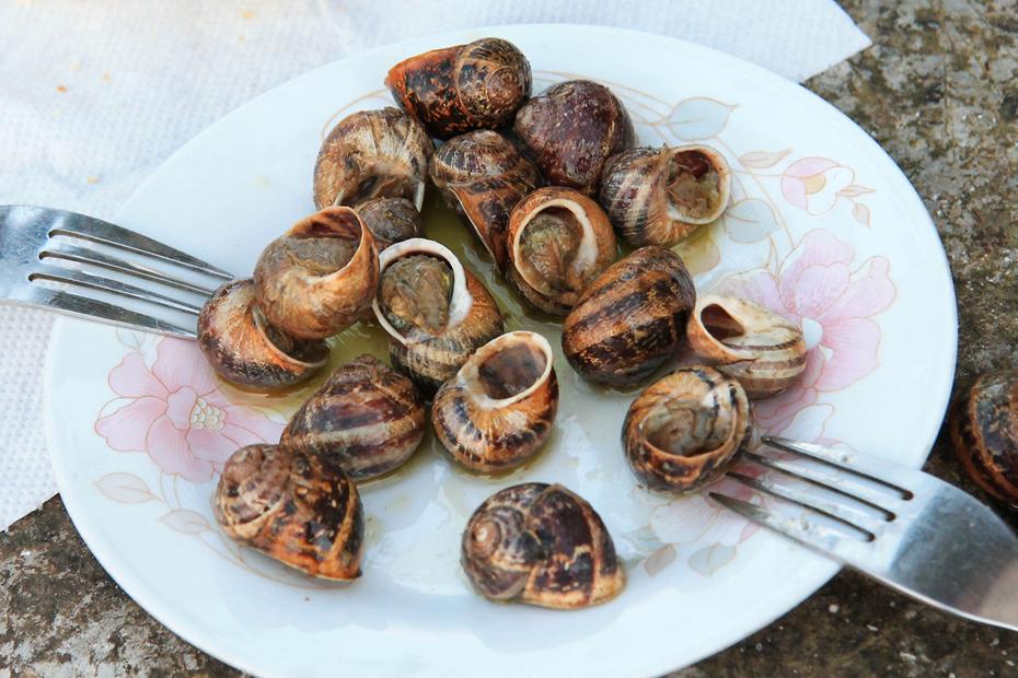 ślimaki do jedzienia Kreta