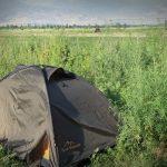 Nocleg w konopiach i korupcja w Kirgistanie