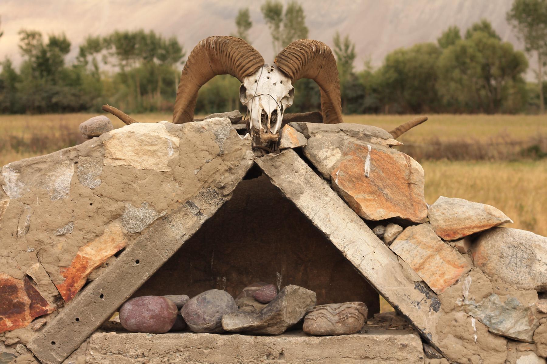"""Na pierwszy ogień idą zwierzęta lub ich pozostałości. Są one dość częstym widokiem. Ten tuaj przyjemniaczek """"zdobi"""" jeden z grobowców, w których chowani są pustelnicy Ismailiccy. Ismailizm to ugrupowanie religijne wywodzące się z islamu szyickiego. Ismailici są bardzo postępowym nurtem w Islamie, a ów grobowce pełnią rolę meczetów."""
