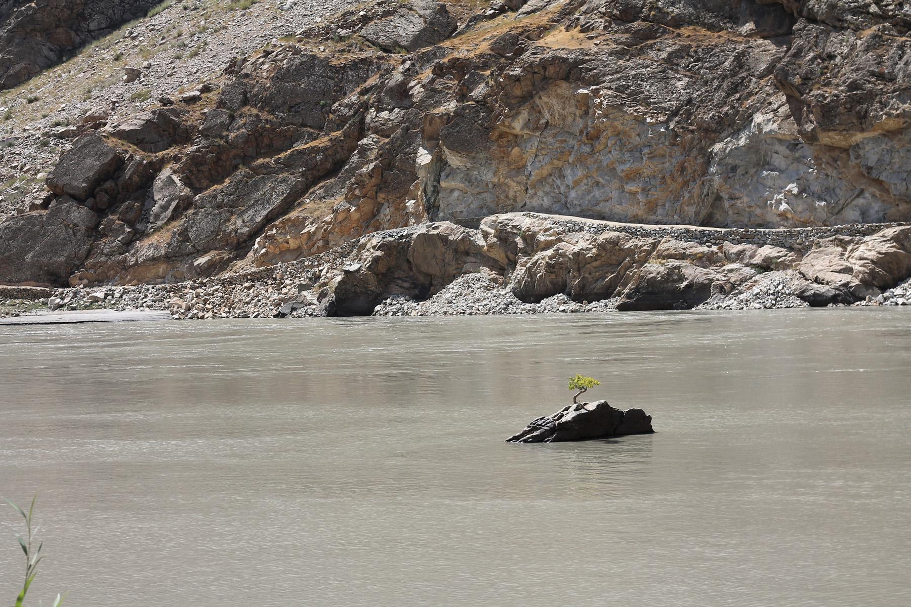 Drzewo na rzece Pandż. Należy do Tadżykistanu czy Afganistanu? ;)