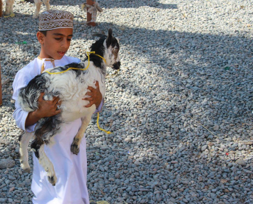Oman (Marek Szewczyk www.kasai.eu