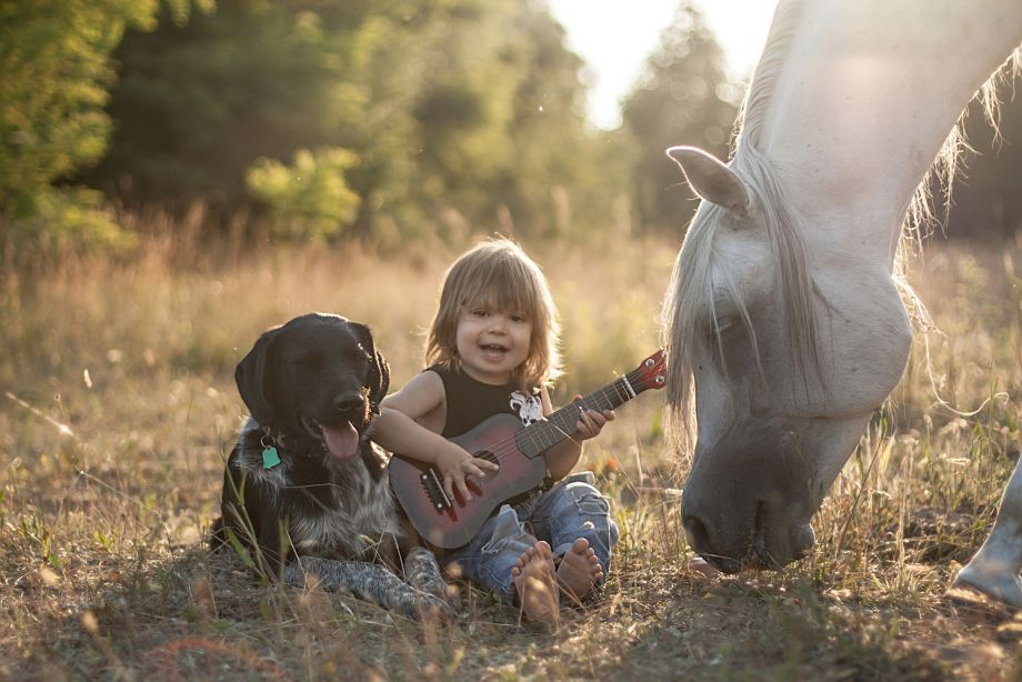 Przyjaciele  Naszą pasją są konie i gra na gitarze ,na zdjęciu najmłodszy pasjonat w Rodzinie 2,5 letni Igor i Jego team