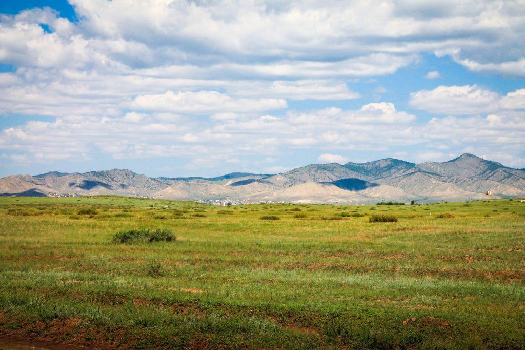 step mongolski