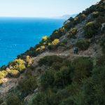 Półwysep Akamas. Najpiękniejsze miejsce na Cyprze!