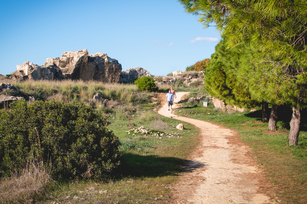 Zwiedzanie Pafos skały afrodyty