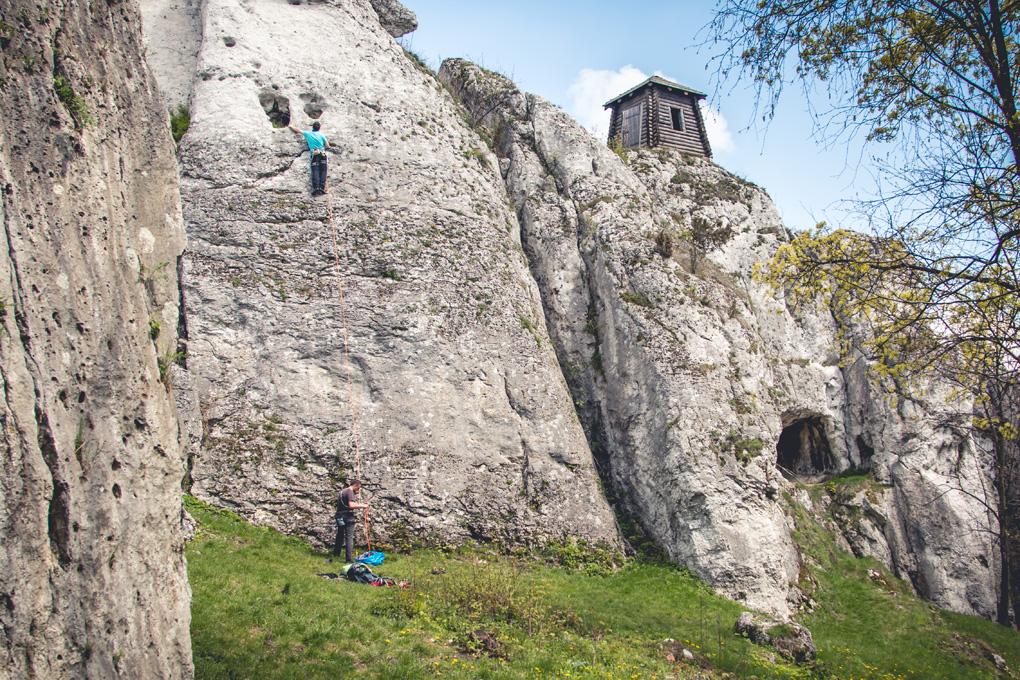 Jura krakowsko-czestkochowska