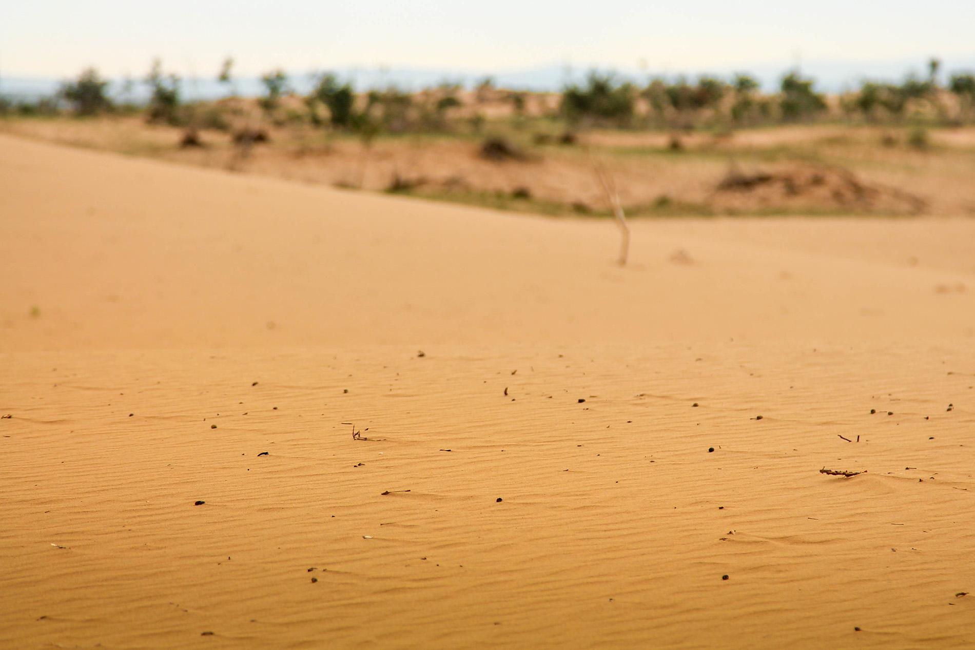 Pustynia gobi mongolia