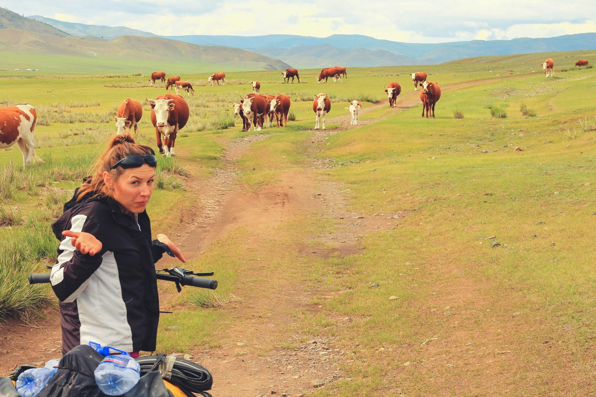 Rowerem w mongoli wypożyczanie trasy