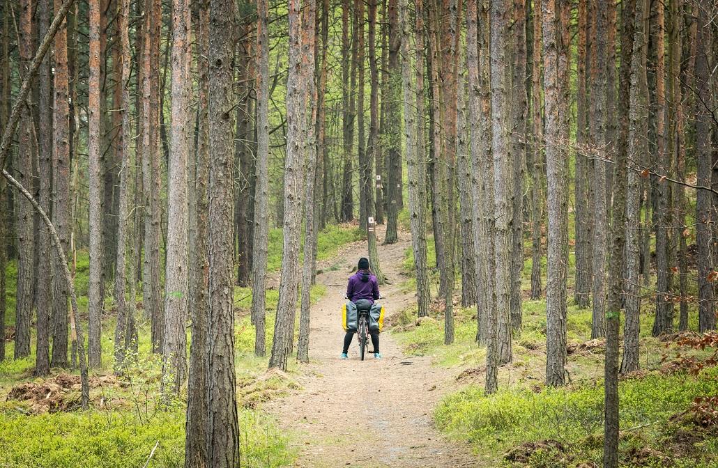 śląsk na rowerze szlak orlich gniazd trasy ciekawe miejsca