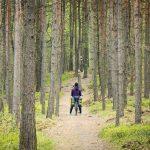 Szlak Orlich Gniazd, milczący rezerwat i kontrowersyjnie piękny Zamek Bobolice