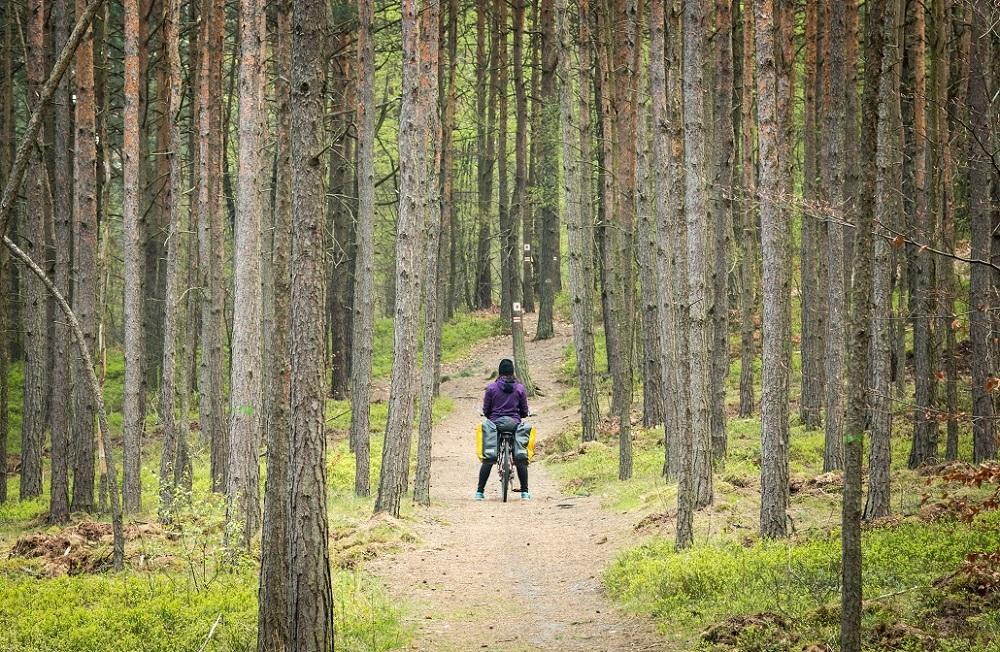 śląsk na rowerze  trasy ciekawe miejsca szlak orlich gniazd