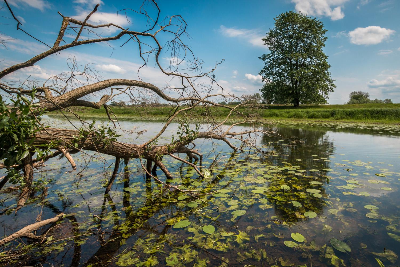 Parki narodowe niemcy