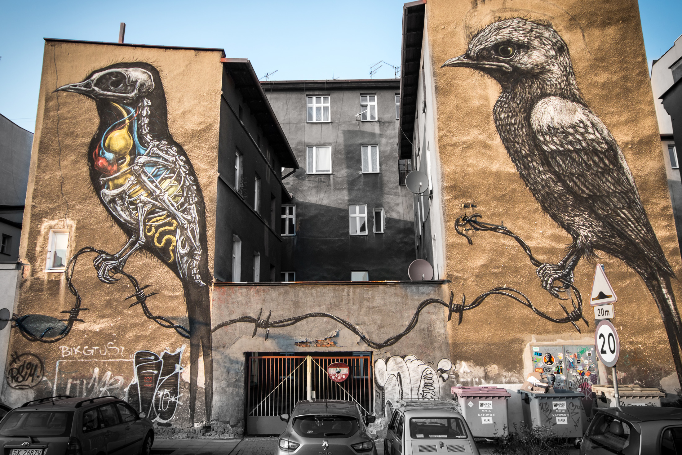 Mural paki katowice